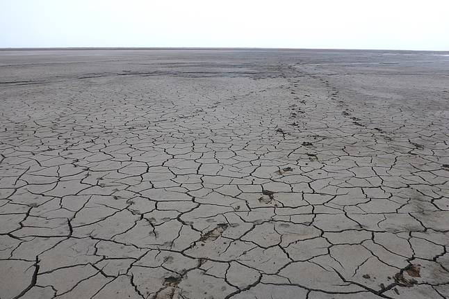 Drained lake ground