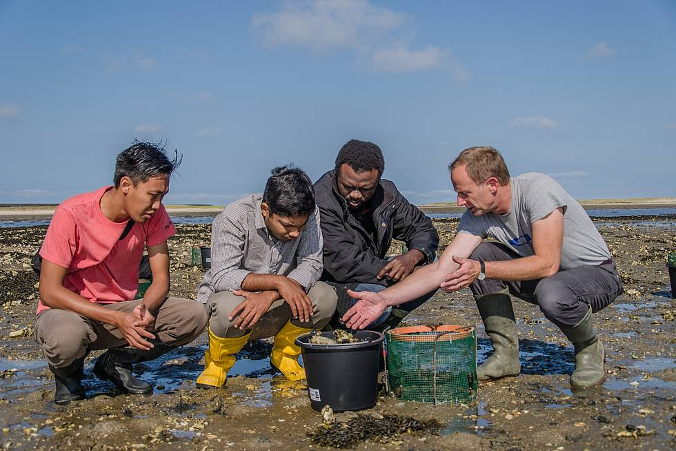AWI biologist Christian Buschbaum (right) is explaining an field experiment to POGO students Essowe Panassa (2nd f.r.), Subrata Sarker (2nd f.l.) and Widya Ratmaya (l.).