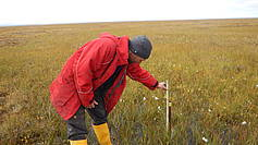 Measuring the lowering of the soil because of the permafrost thaw at a longterm subsidence station