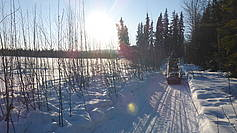 Goldstream Valley in Fairbanks ist easy to access by car and snow machine.