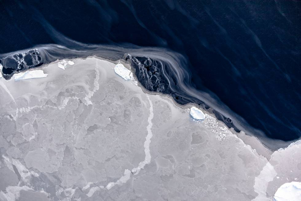 Antarctica: The wind has opened a lead between ice floes. As the white streaks reveal, the water surface is freezing again immediately. The streaks occur when the wind drifts loose ice crystals.  Photo: IceCam/Stefan Hendricks, Alfred-Wegener-Institut