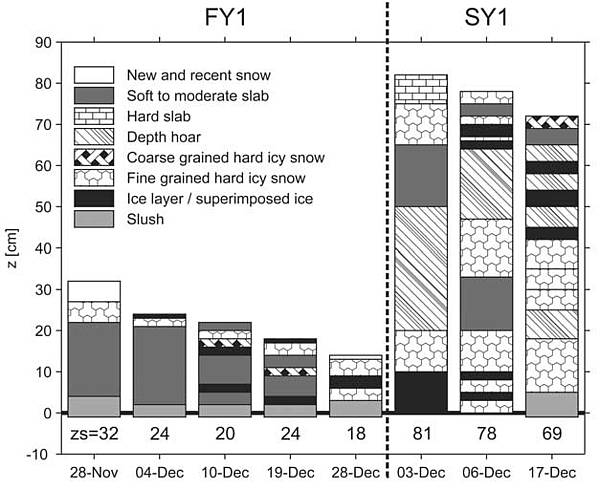 Differences in snow cover properties on Antarctic sea ice