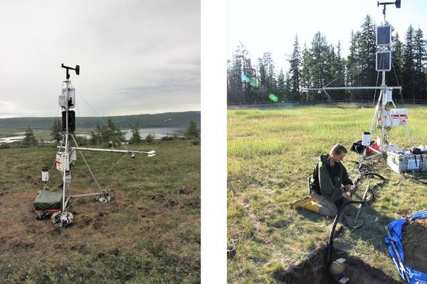 The two microclimate stations that were set up in July and August 2018
