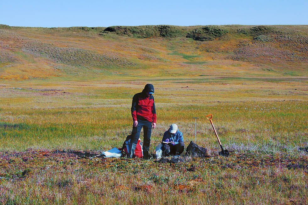 Sampling of peat horizons for reconstruction of permafrost thaw history