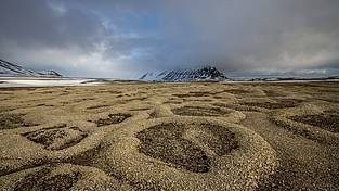 Spitsbergen: When the winter cold leaves behind cracks in the permafrost soil, they tend to attract small rocks and other flotsam transported by springtime melt water streams. When the water in the cracks refreezes and expands, all the deposited material is spit back up, forming these distinctive ring patterns.
