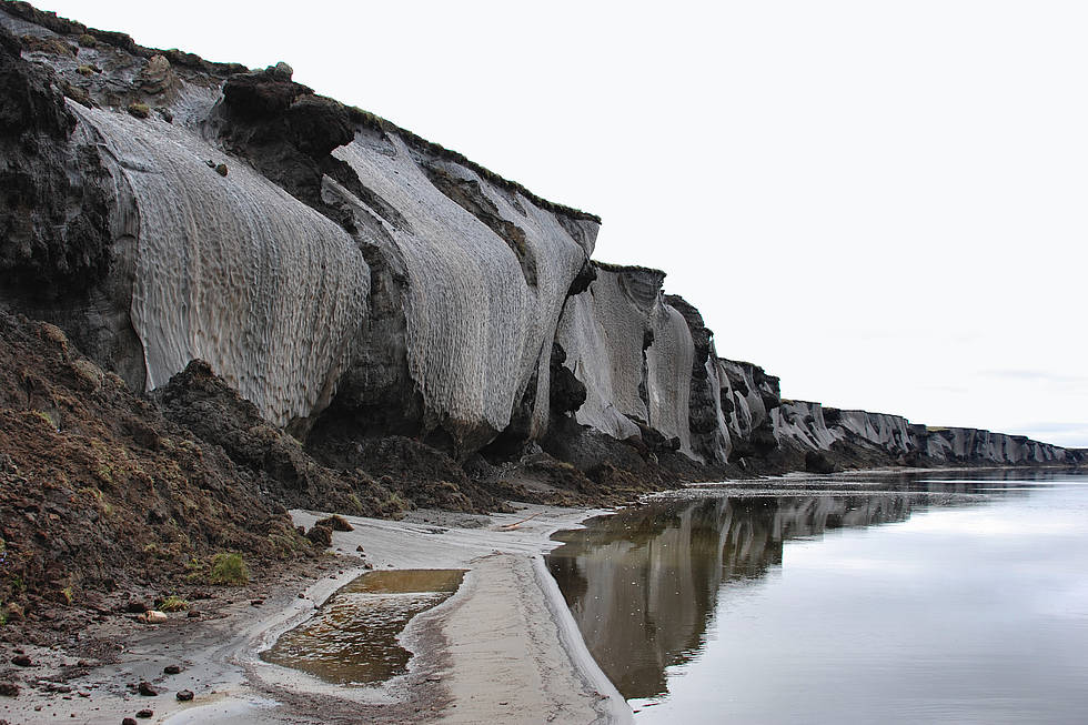 Impressive ice-wedge ground-ice bodies constitute the 25 m high and more than kilometer long Yedoma cliff