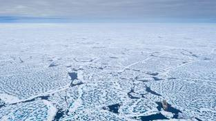 Heading for the new MOSAiC ice floe, Polarstern takes the shortest way to the area of interest: via the North Pole. On tghe way north, the sea ice is surprisingly weak, has lots of melt ponds, and Polarstern is able to easily break it.