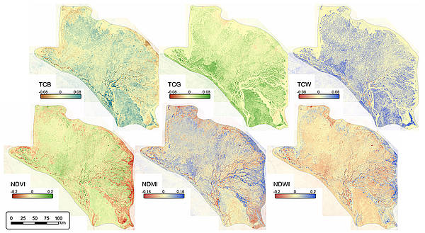 Regional overview of decadal trend slope of multi-spectral indices (TCB, TCG, TCW, NDVI, NDMI, NDWI).